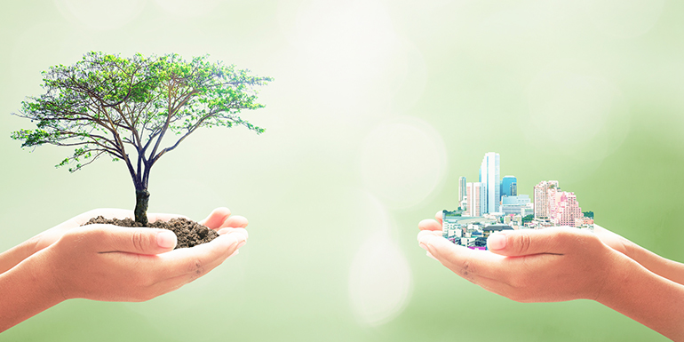 30 Inspirational Quotes About Sustainability