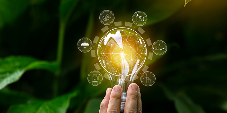What can the Digital Era teach us about Sustainability