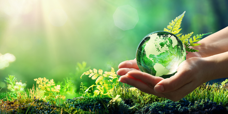 4 Legendary laws in the world in the favour of sustainability