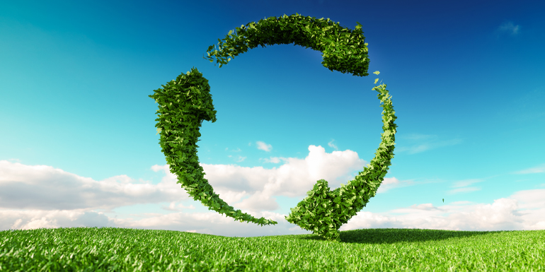 Are there any limits to sustainability and sustainable development