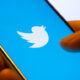 5 thoughtful Twitter handles about the environment