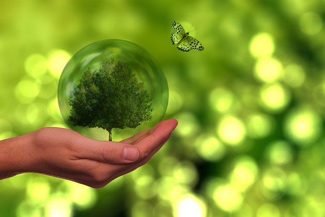 The Future with green energy